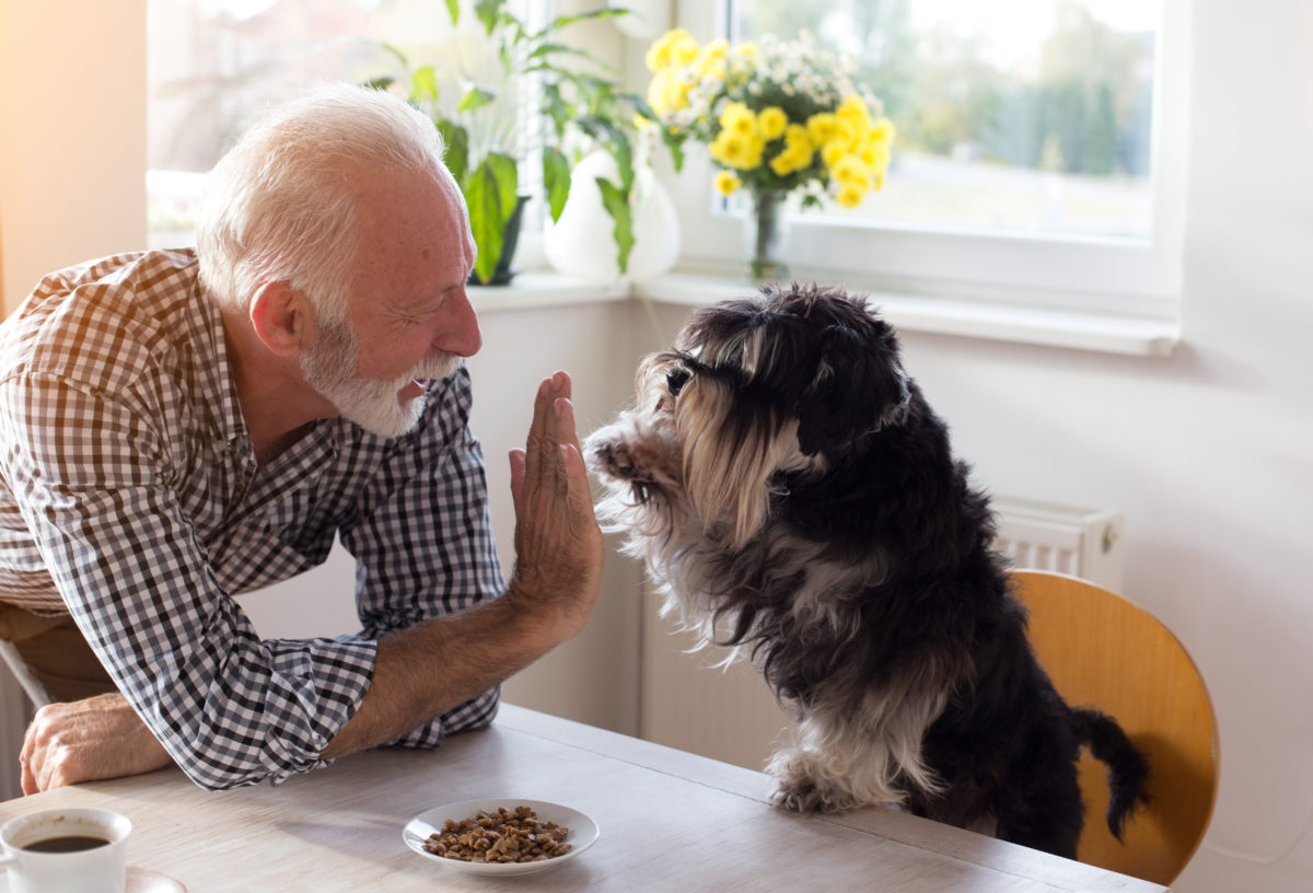 A senior man high-fiving a dog.