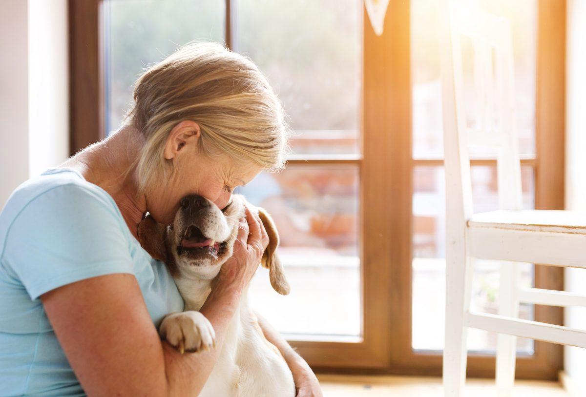 pets-for-seniors-1200x814.jpg